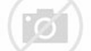 Ostrich beat up monkey, man and hyena
