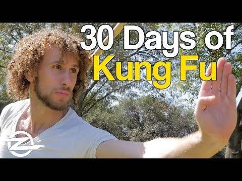 I Did Kung Fu Everyday for 30 Days