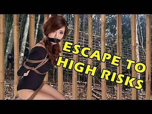 Wu Tang Collection - Escape To High Risks