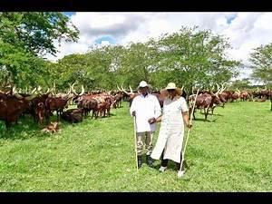 Museveni ne Maama Janet banyumiddwa Weekend ku Farm e Kisozi - Gomba