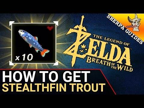 How to Find Stealthfin Trout | Stealth Gear Upgrades | Zelda Breath of the Wild