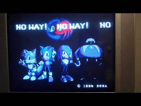 Sonic & Knuckles anti piracy