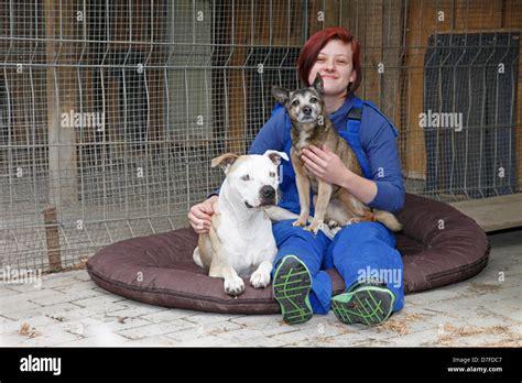 Alamy Stock Dogs