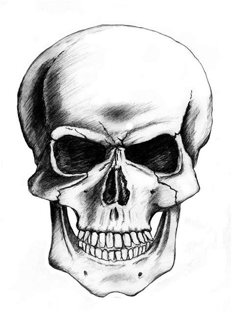 Art Skull Drawings