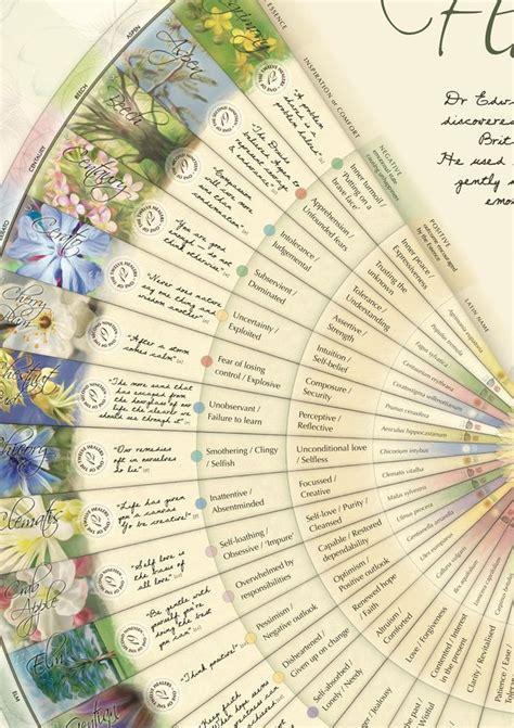 Bach-FlowerEssences-Chart-Wall