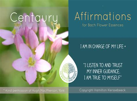 Bach-FlowerMedicine