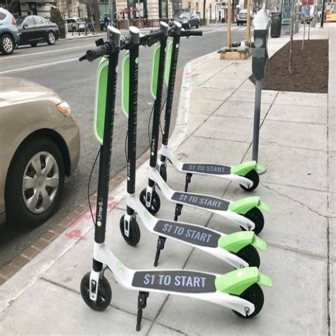 ChicagoBird-Scooter