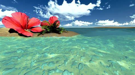Exotic-FlowersTropical-Beach