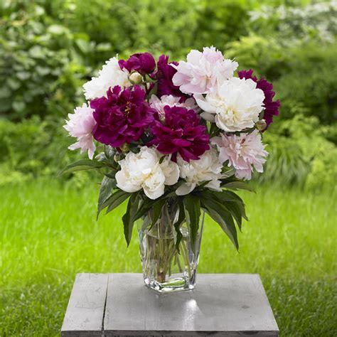 GardenFlower-Bouquets