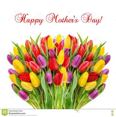 Mother's-DayTulip-Flowers