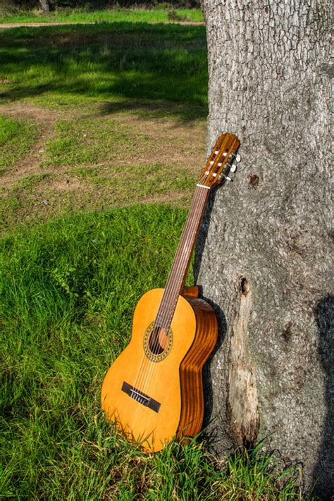 Musical Instruments | Watches Store Online Reviews