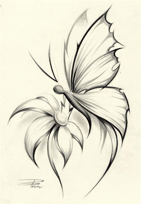 Pencil Drawings Flowers Butterflies