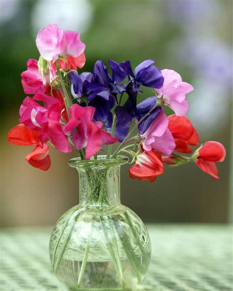 Sweet-PeaFlower-Bouquet