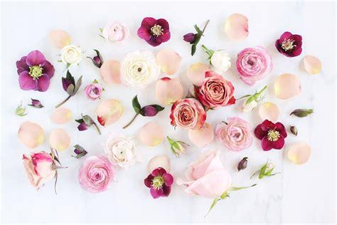 Tumblr-FlowersDesktop-Wallpaper