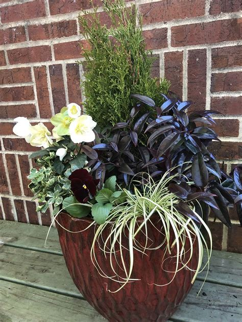 Winter-OutdoorPots-for-Plants